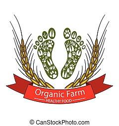 farm-healthy, nourriture, organique