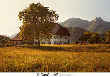 farm house in the mountains at sunset - building and tall tree with blooming meadow, mountains in the background