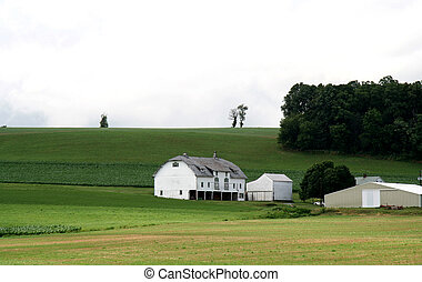 Farm House with Barn on Hill