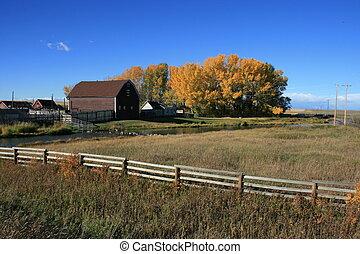 Farm in autumn