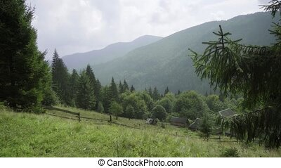 Farm in the foothills of the Ukrainian Carpathian Mountains