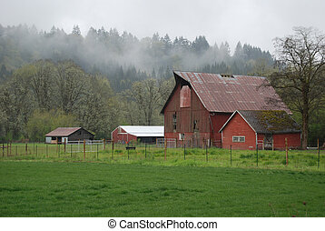 Green pastures and red barns on a misty day