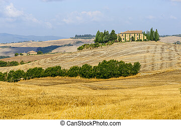 Farm in Val d'Orcia (Tuscany) - Typical landscape in Val d'...