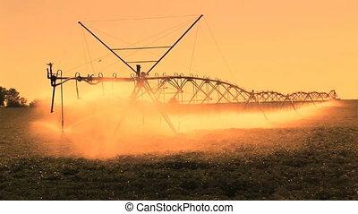 Farm Irrigation - Late afternoon sprinklers on a farm,...