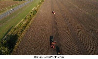 Farm machinery harvesting potatoes. Farmer field with a...