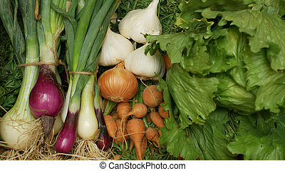 Farm organic vegetables directly from garden carrots, yellow and red onions, garlic, green lettuce salad , all in a wood box crate mixed shop organic food health, without chemicals, sprays pesticides