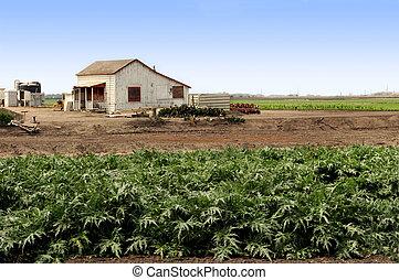 Farm Out Building