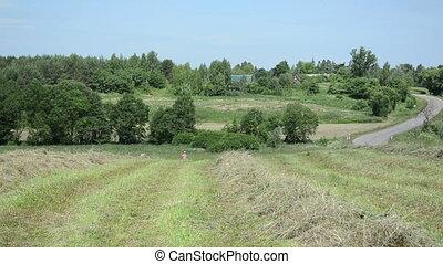 farm peasant rake hay