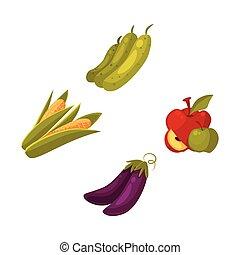 Farm products - apple, zucchini, corn, eggplant - Set of...