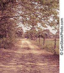 Farm road in retro style color
