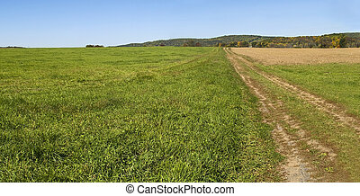 Farm Road Panorama