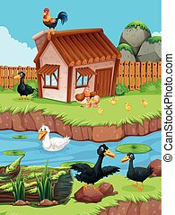 Farm scene with ducks and chickens