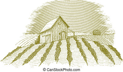 Farm Scene - Woodcut style illustration of a rural farm...