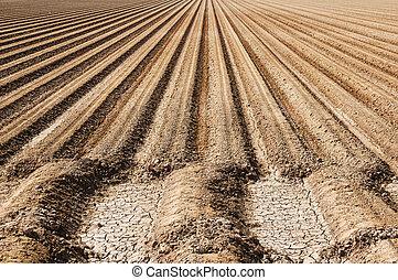 Farm Soil Rows