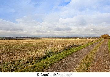 farm track in autumn
