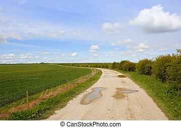 farm track in springtime - a limestone farm track with a ...