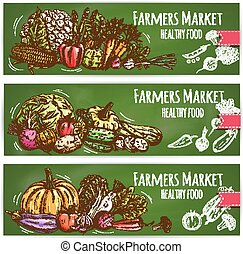 Farm vegetables vector sketch banners set
