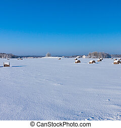 Farm with a barn and horses in winter