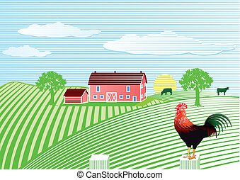 Farm with cock