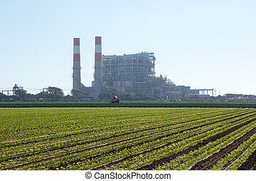 Energy power plant is suprisingly close to a field of cilantro.