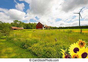 Farm with wind turbine.
