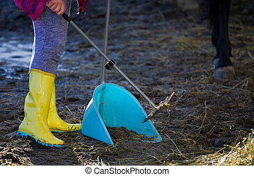 Farm worker cleaning horse feces - Girl collecting horse...