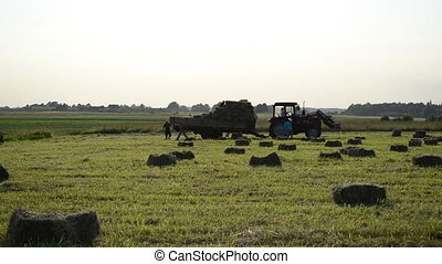 farm worker load hay bale - Group of farm workers carry load...