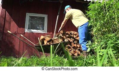 Farm worker man boy unload firewood wood from rusty barrow cart. 4K