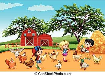 farma, krmení, živočichy, děti