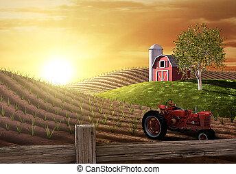 farma, ráno