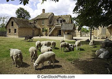 farma, -, středověký, versailles