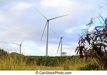 farma, turbína, oahu, dech, havaj