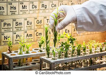 farmacêutico, laboratório, explorar, novo, métodos, de,...