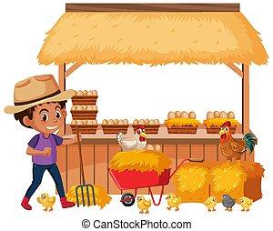 Farmboy and many fresh eggs on the farm