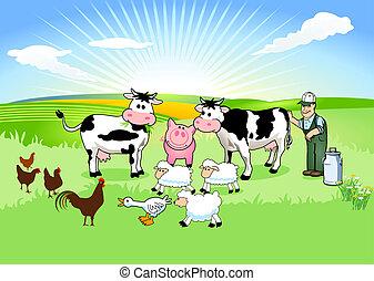 farmer, és, övé, állatok