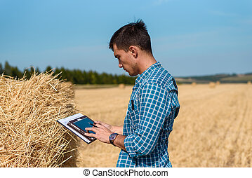 Farmer agronomist in the field uses tablet