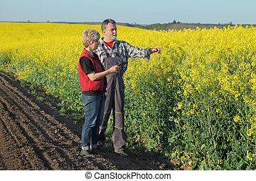 Farmer and agronomist in blossoming rapeseed field