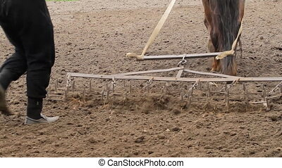 Farmer and  horse - Farmer Plowing a Field with a horse