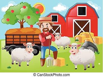 Farmer and sheeps on the farm