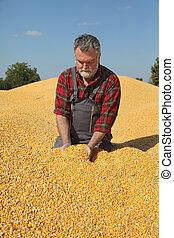 Farmer at corn stack after harvest