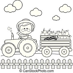 Farmer at the farm driving a tractor and carrying fruits. Vector black and white coloring page