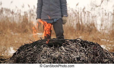 Farmer burning stack of dry reed in the field