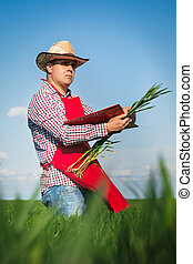Farmer checking his crops
