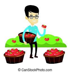 Farmer collecting tomatos vector illustration.