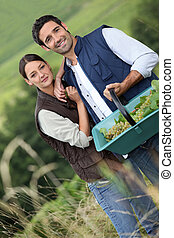 Farmer couple in field with basket of grapes