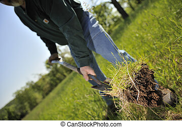 Farmer digging up dirt in order to plant a tree sappling