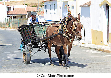 Farmer driving on his horse cart in Portugal