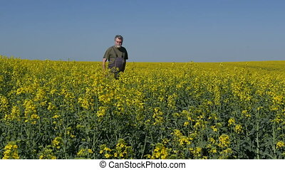 Farmer examining blooming rapeseed field - Agronomist or...