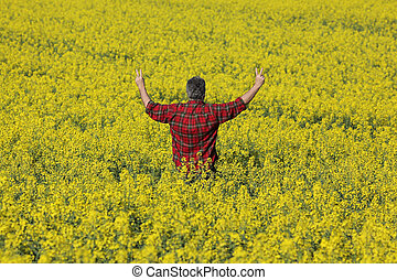 Farmer examining blossoming rapeseed field and gesturing