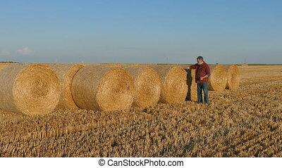 Farmer examining rolled straw, bale - Farmer in wheat field...